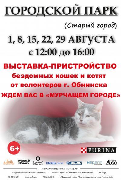 Afisha-go. Афиша мероприятий: Выставка-пристройство кошек и котят