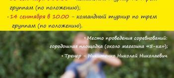 Afisha-go. Афиша мероприятий: Командный турнир по игре «Городки»
