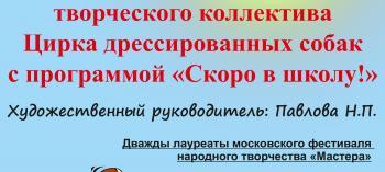 Обнинск. Отдых и развлечения: Выступление цирка дрессированных собак