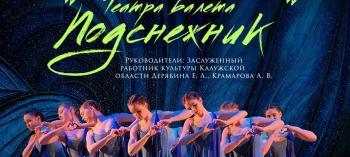 Afisha-go. Афиша мероприятий: Онлайн-концерт театра балета «Подснежник»
