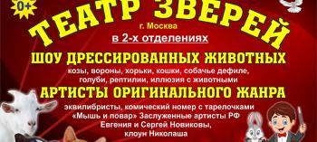 Обнинск. Отдых и развлечения: Представление «Театр зверей»