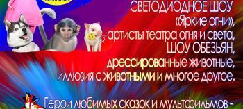 Обнинск. Отдых и развлечения: Шоу «Наш добрый цирк»