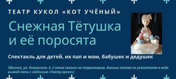 Обнинск. Отдых и развлечения: Спектакль «Снежная Тётушка и её поросята»