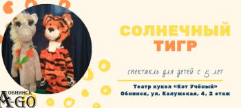 Обнинск. Отдых и развлечения: Спектакль «Солнечный Тигр»